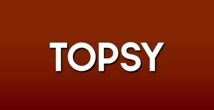 Topsy -The Social Aearch Engine