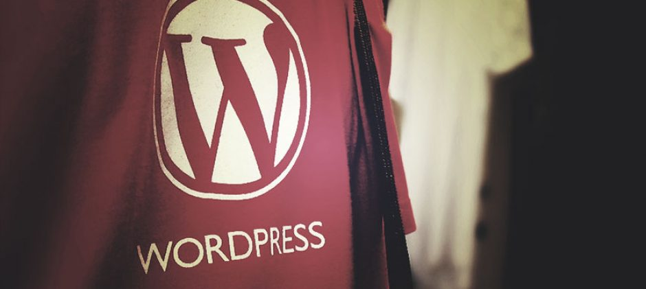 The 20 most popular WordPress plugins you should know [Infographic]