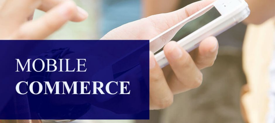 Mobile Commerce Lessons from the Trenches: A Travel Payments Expert Provides Tips, Tactics and Insights