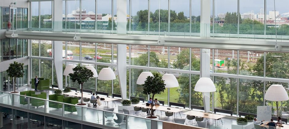 7 Tips: Going Green Through Office Location – A Guide For Executives