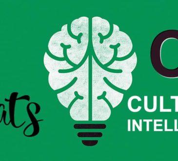 Cultural Intelligence (CQ)