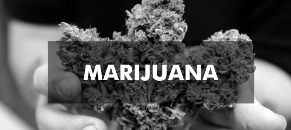 Some Of The Most Influential People In The Weed Industry
