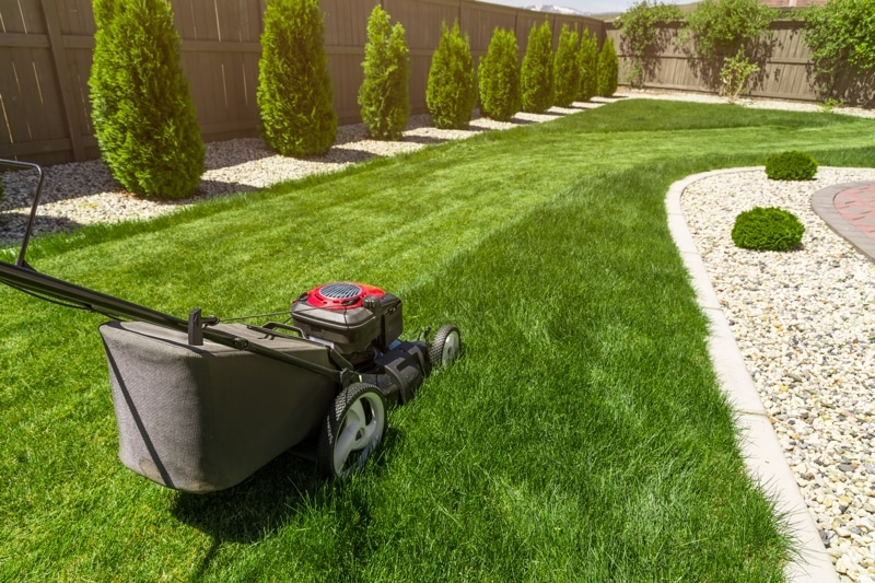 How To Take Care Of Your Lawn For A Safer And Better Home