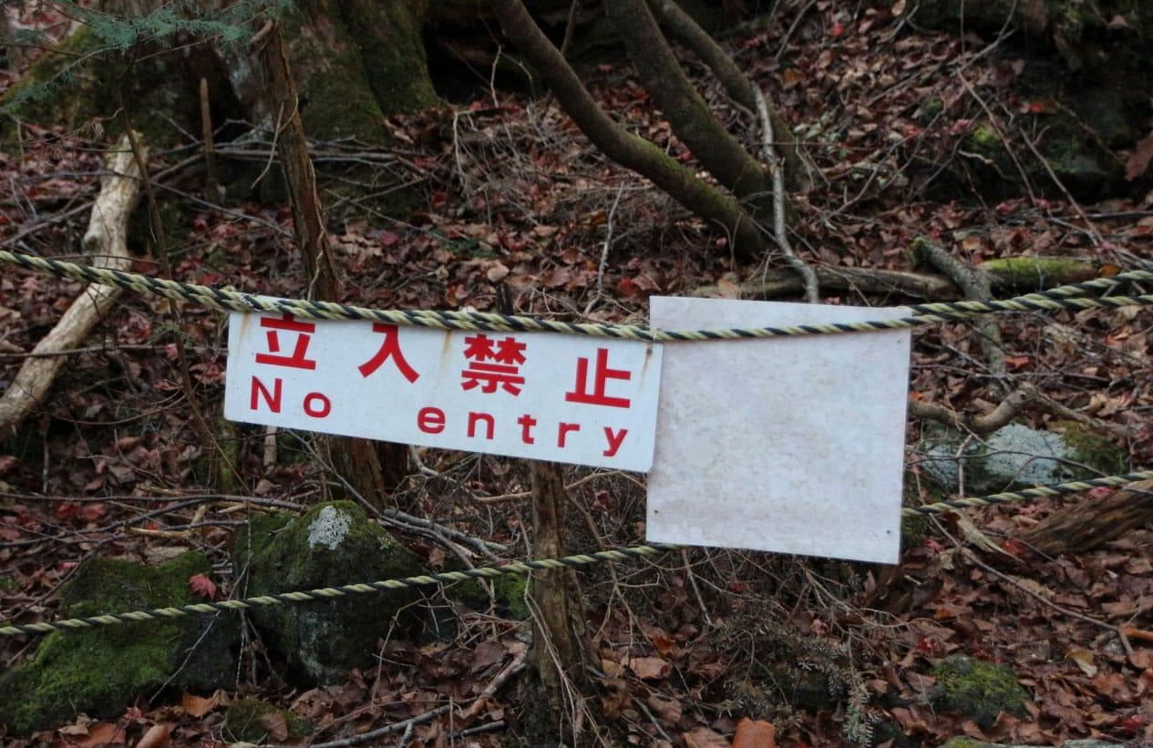 Aokigahara Forest (Sea of Trees or Suicide Forest), Japan