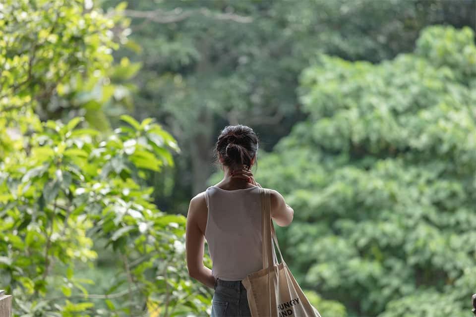 Jalan Monkey Forest Ubud, Bali Indonesia